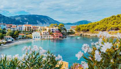 Panoramic view to Assos village in Kefalonia, Greece. Bright white blossom flower in foreground of turquoise colored calm bay of Mediterranean sea and beautiful colorful houses in background Fototapete