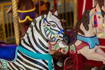 zebra is ready to ride