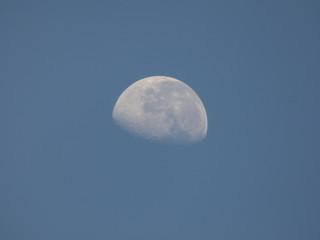 Brazilian moon