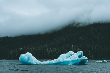 Iceberg in water surrounded by forest and fog
