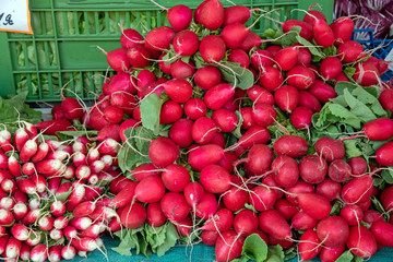 A heap of red radish for sale at a market