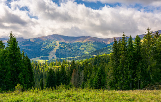 beautiful landscape with forested hills. autumn landscape in wonderful sunny weather and low clouds hanging over the distant mountain
