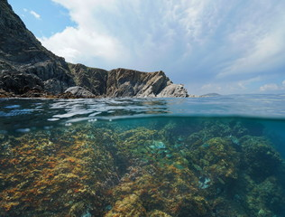 Rocky coast with fish underwater in the Mediterranean sea, split view above and below water surface, Marine reserve of Cerbere Banyuls, Pyrenees Orientales, France