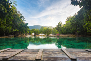 Emerald Pool in Krabi Thailand