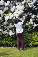 The guy in the hat pictures of flowering Rhododendron bush
