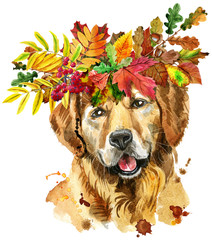 Watercolor portrait of golden retriever with wreath of leaves