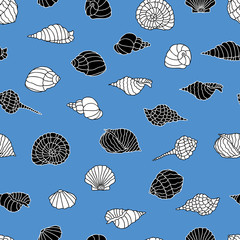 Vector pattern of the different sea shells