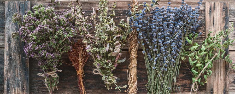 Getrocknete Heilpflanzen und Arzneikräuter, Honöopathie und Kochen