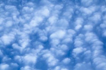 Cirrocumulus Clouds Fill Frame