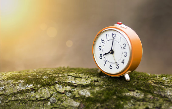 Daylight savings time, autumn concept - old alarm clock with copy space