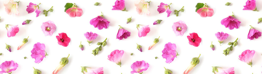 Fototapete - Composition pattern from plants, wild flowers mallow isolated on white background, flat lay, top view.