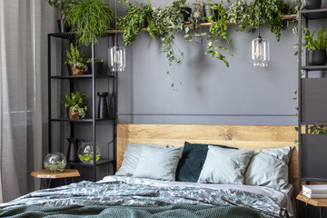 Grey pillows on wooden bed in dark bedroom interior with lamps and plants. Real photo