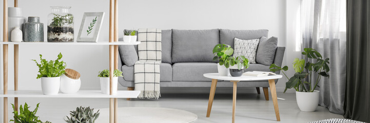 Nordic style sitting room interior in real photo with fresh plants, grey sofa with pillow and blanket and wooden rack with decor