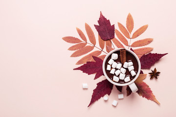 Thick hot chocolate cup with marshmallow on autumn leaves
