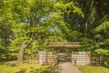 Small interior bamboo gate of the garden of Rikugien under the maple trees that let in the rays of the sun.