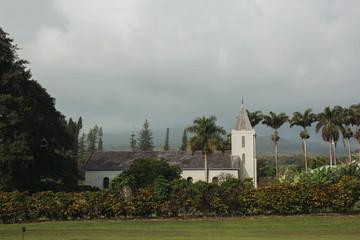 Tropical church building