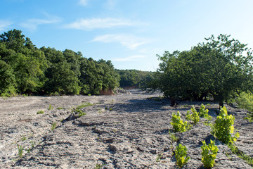 The dry rock bed at a river in Oklahoma.