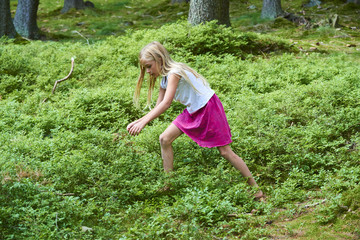 Child blond adorable girl picking fresh berries on blueberry field in forest. Child pick blueberry in the woods. Little cute girl playing outdoors. Summer family fun.