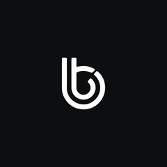 Unique modern trendy BT black and white color initial based icon logo.