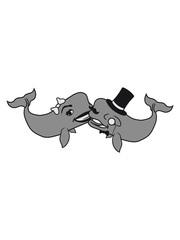 paar 2 freudne team liebe verliebt frau sir herr gentlemen reich zylinder monokel grauwal blauwal pottwal buckelwal wal meeressäuger groß riesig fisch schwimmen meer see tauchen
