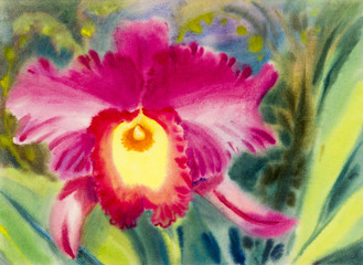 Watercolor original painting pink color of orchid flower