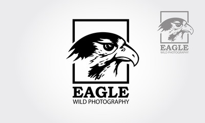 Eagle wild photography Logo template. Clean and modern style on white background