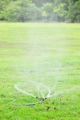 夏の公園 水まき
