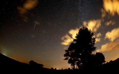 Meteors streak past stars in the night sky during the Perseid meteor shower in Premnitz