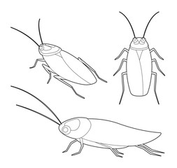 Insect Set Cute Cockroach Cartoon Vector Coloring Book