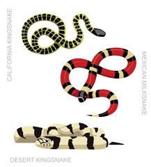 Snake Kingsnake Set Cartoon Vector Illustration