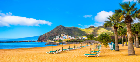 Amazing view of beach las Teresitas with yellow sand, umbrellas, longues and palm trees. Location: Santa Cruz de Tenerife, Tenerife, Canary Islands. Panorama