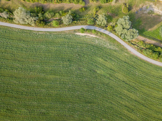 Aerial view of road trough rural landscape with bushes during sunset in Switzerland Wall mural