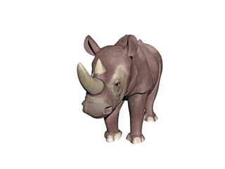 Nashorn als Dickhäuter