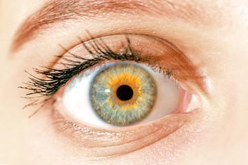 Deurstickers Iris macro blue yellow eyes , iris pupil , macro eyes