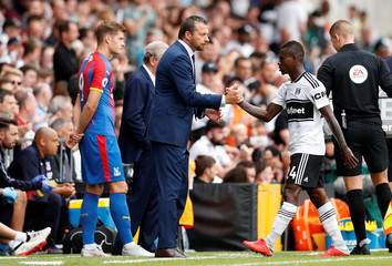 Premier League - Fulham v Crystal Palace