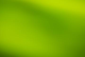 Abstract defocused green circular light pattern