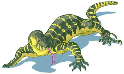 Nile Monitor Lizard Vector clip art cartoon illustration