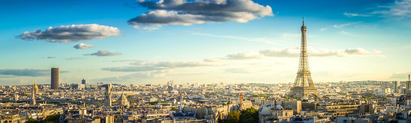panorama of famous Eiffel Tower and Paris roofs, Paris France, retro toned Wall mural