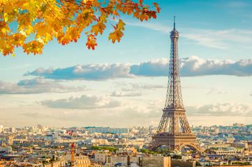 Poster de jardin Paris famous Eiffel Tower landmark and Paris old roofs at fall day, Paris France, toned