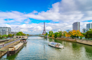 view of Eiffel Tower with moden houses over Seine at fall, Paris, France