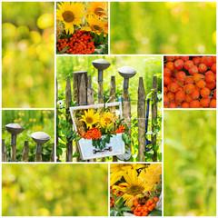 Farbenfrohe Sonnenblumen Collage