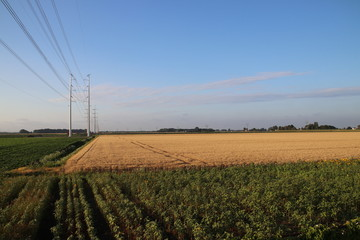 New power lines in the polder at Bleiswijk heading to Leiden as part of the 380Kv ring in the Netherlands.