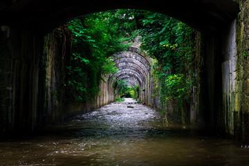 Arcos y naturaleza