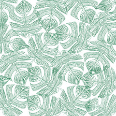 Tropical leaves outline,isolate background,Vector illustration.