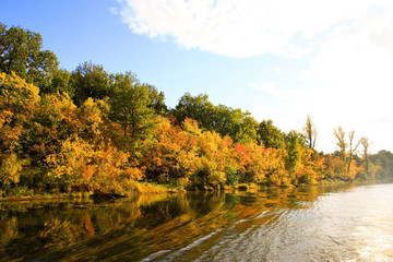 Autumn forest water reflection view in the river Volga. Autumn nature landscape.