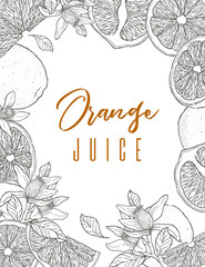 Ink hand drawn frame of orange fruit, black outline. Food element collection. Vintage sketch. Black outline.