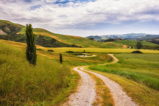 Strada nel verde delle colline senesi