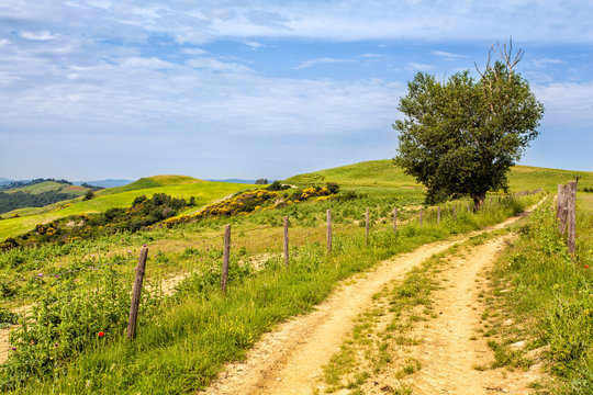 Sentiero con recinto nelle Crete Senesi
