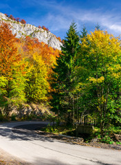 country road through forest in autumn. high cliff on top of a mountain