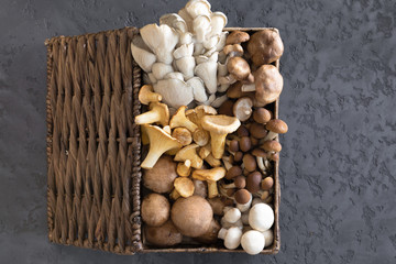 View from above of wicker basket with forest rare delicious edible mushrooms on a dark textural background, flat lay.
